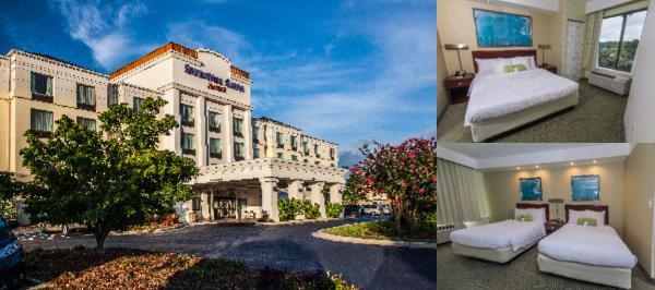 Springhill Suites by Marriott Florence photo collage