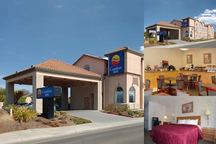 Comfort Inn Watsonville photo collage