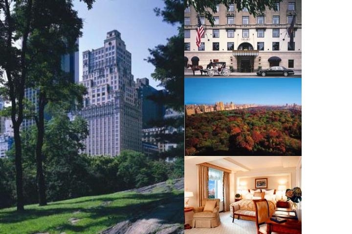 The Ritz Carlton New York Central Park photo collage