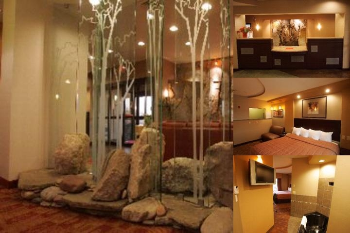 Comfort Suites Perrysburg photo collage