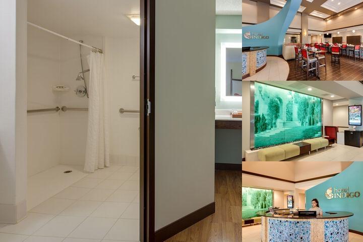 Hotel Indigo Photo Collage