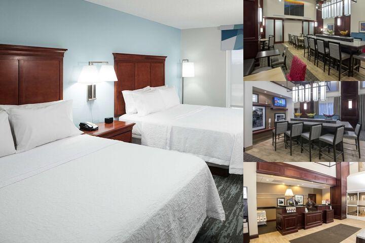 hampton inn suites jackson tn 150 campbell oaks 38305. Black Bedroom Furniture Sets. Home Design Ideas