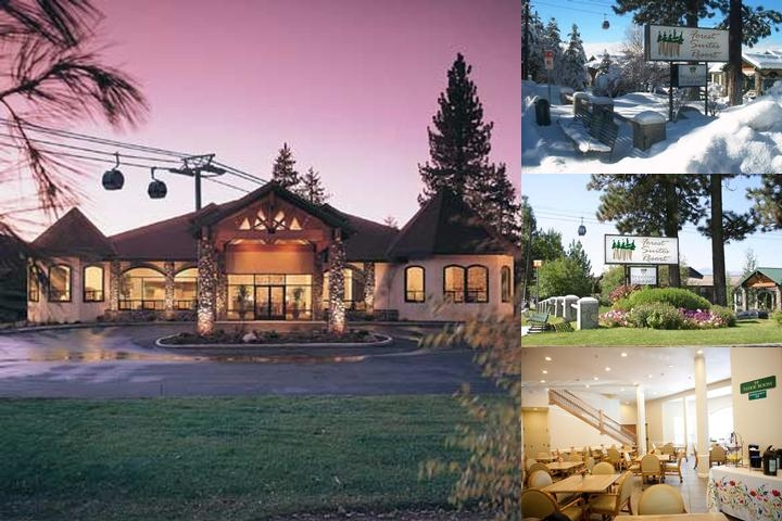 Forest Suites Resort photo collage