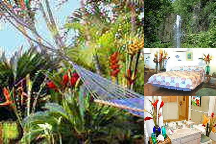 Maui Tradewinds photo collage
