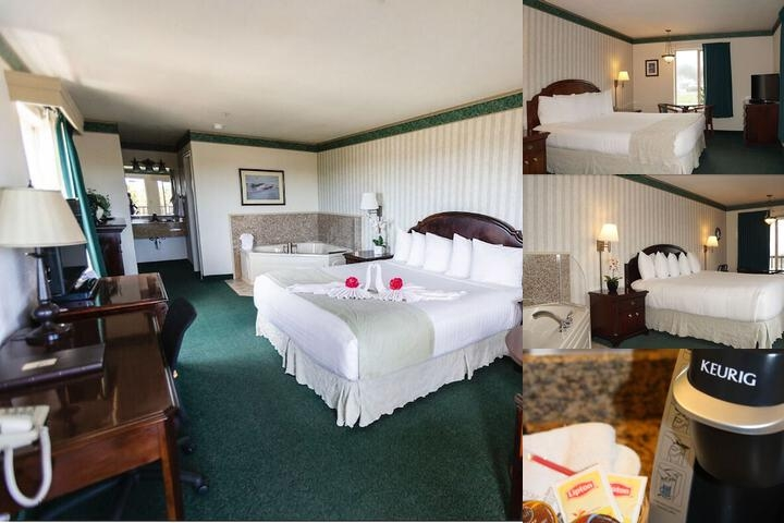 Emerald Dolphin Inn photo collage
