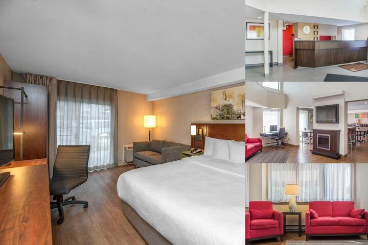 Comfort Inn Cambridge photo collage