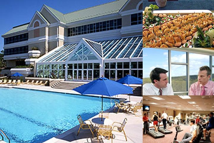 Pocmont Resort photo collage