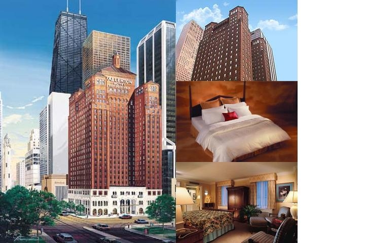 The Allerton Chicago photo collage