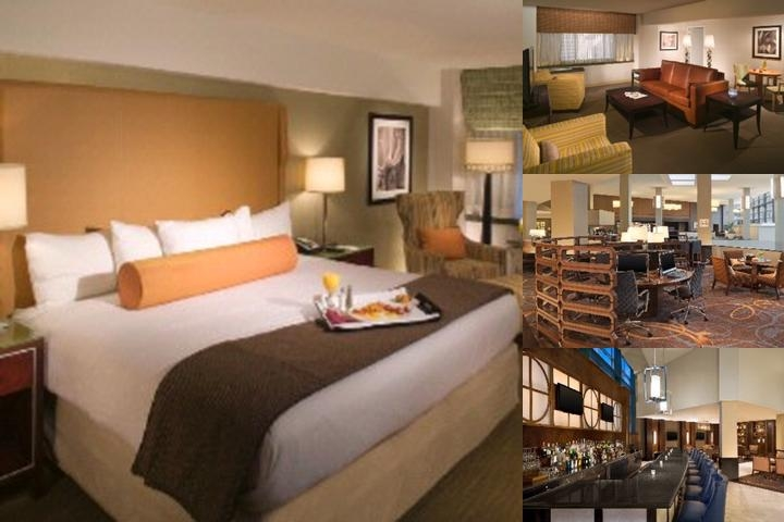 Sheraton Stamford Hotel photo collage
