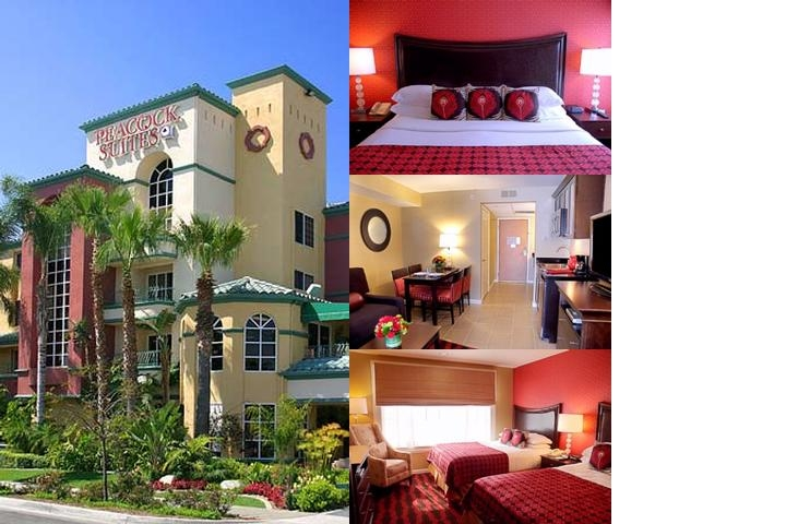 Peacock Suites Resort photo collage