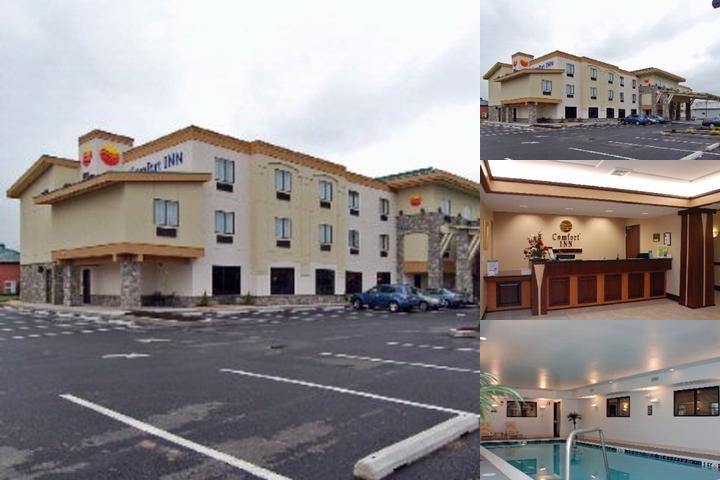 Comfort Inn / Williamsport photo collage