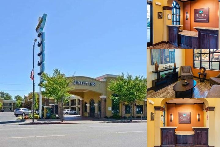 Quality Inn Chico photo collage