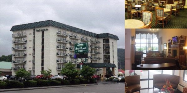 Park Grove Inn photo collage