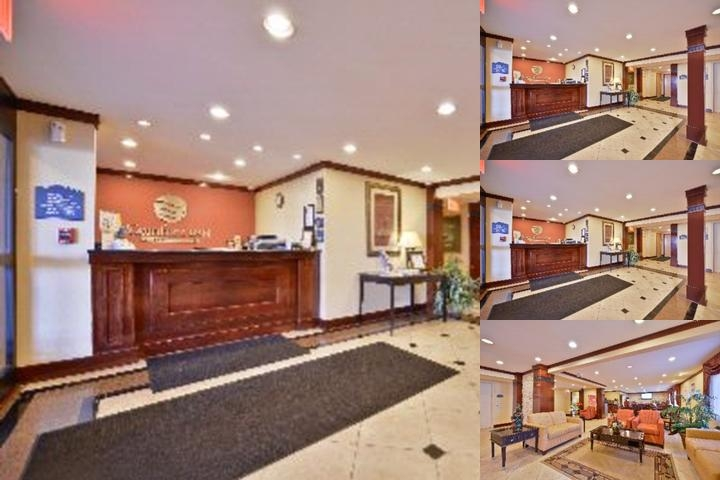 Comfort Inn Hoffman Estates photo collage