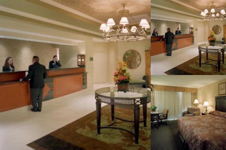 Holiday Inn Billy Graham Parkway Hotel photo collage