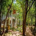 Photo of Amaara Forest Hotel Sigiriya