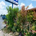 Photo of Americas Best Value Inn The Legends Inn