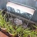 Image of Best Western Pony Solidier Inn & Suites