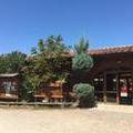 Photo of Camping Paradiso Viareggio