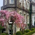 Photo of Finnstown Country House Hotel