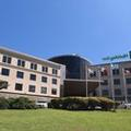 Photo of Holiday Inn Córdoba