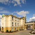 Photo of Holiday Inn Express Mout Pleasant
