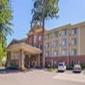 Image of Holiday Inn Express & Suites Lacey