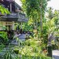 Exterior of Nida Rooms Ubud Monkey Forest 19341 at Pondok Pundi