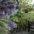 Photo of Quinta Da Bela Vista Madeira