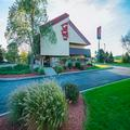 Image of Red Roof Inn Indianapolis North - College Park