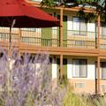 Image of Santa Fe Sage Inn & Suites