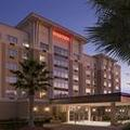 Photo of Sheraton Jacksonville