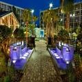 Image of Sheraton Lake Buena Vista Resort
