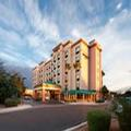 Image of Springhill Suites Marriott Phoenix Tempe Airport