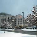 Image of Springhill Suites Pittsburgh Mills
