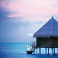 Exterior of Taj Exotica Resort & Spa