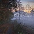 Photo of The Hermitage Hotel