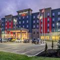 Image of Towneplace Suites Belleville