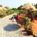 Photo of Zorbas Beach Village Hotel 3 Star Hotel