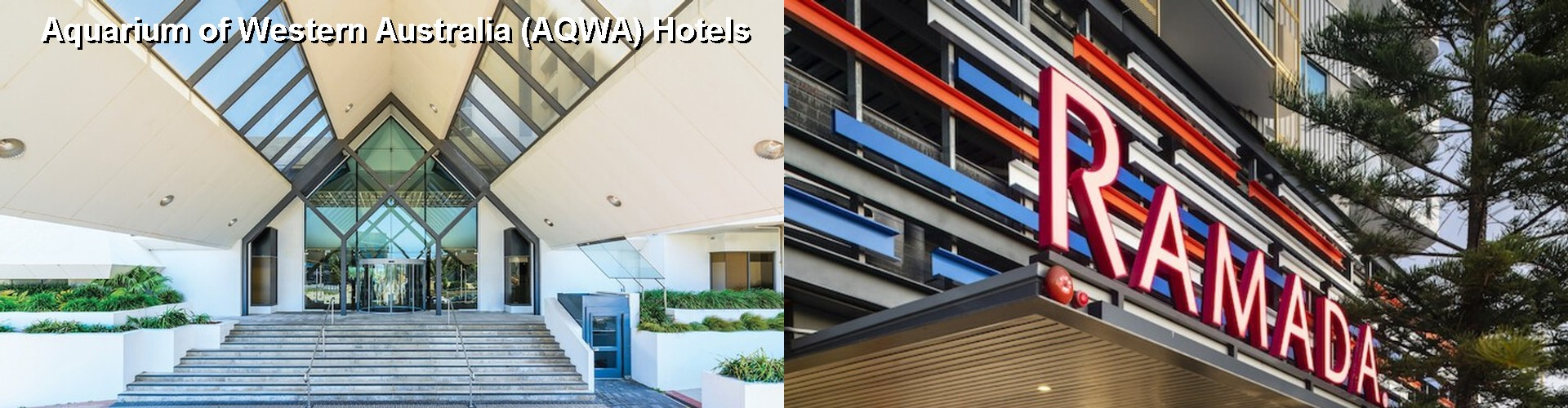 5 Best Hotels near Aquarium of Western Australia (AQWA)