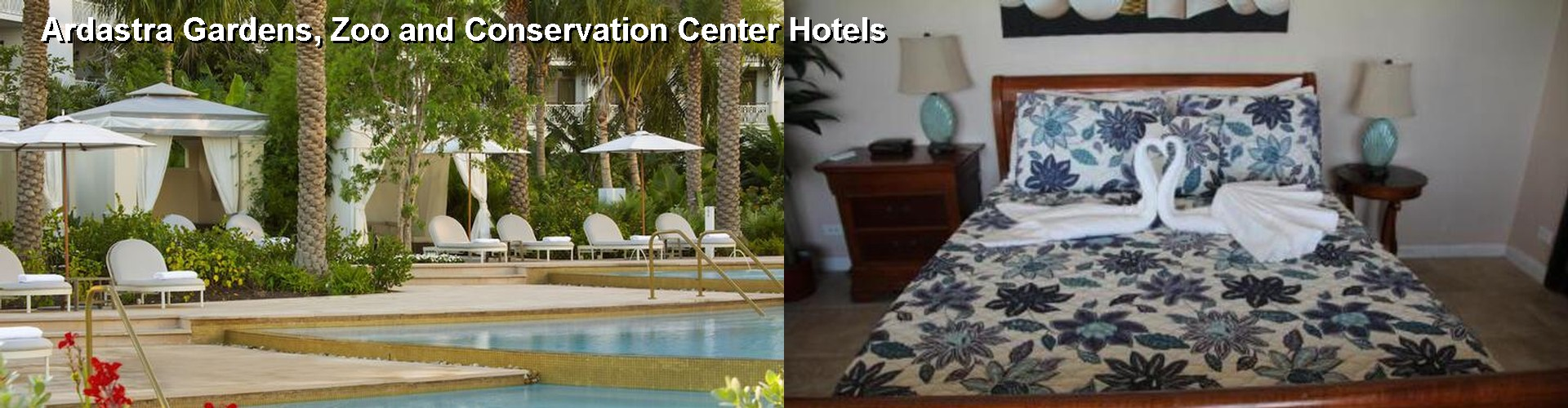 5 Best Hotels near Ardastra Gardens, Zoo and Conservation Center