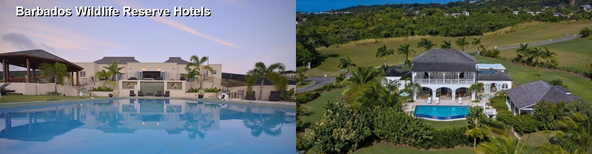 5 Best Hotels near Barbados Wildlife Reserve