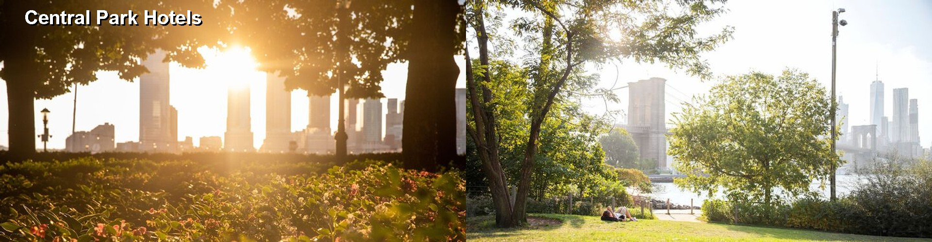 5 Best Hotels near Central Park