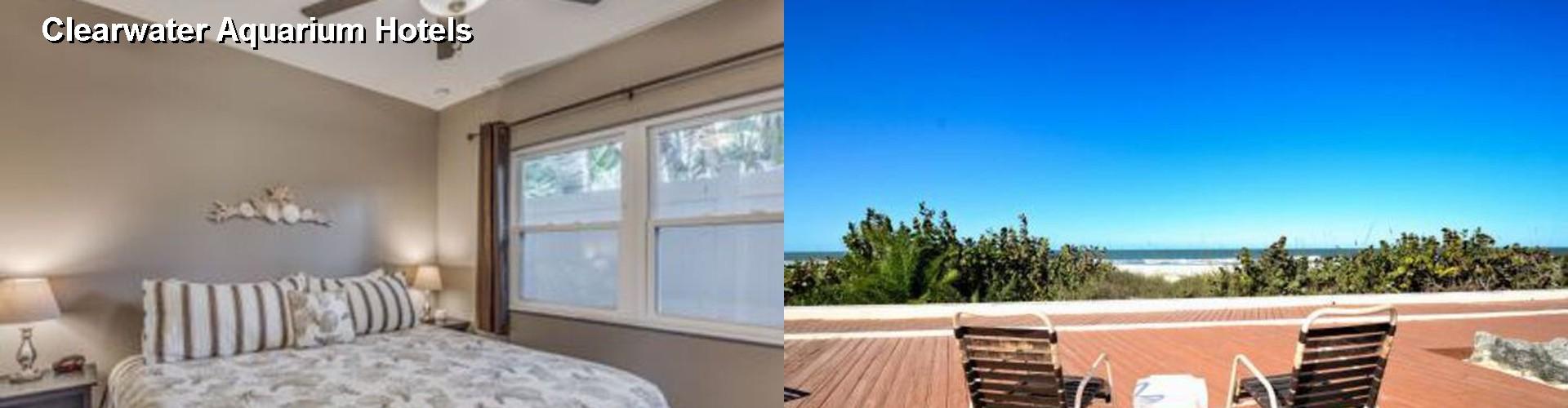 5 Best Hotels Near Clearwater Aquarium