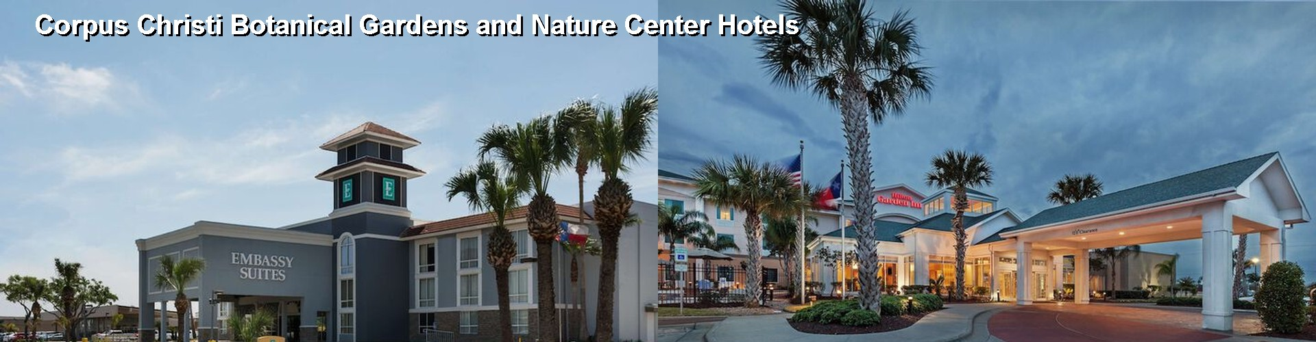 5 Best Hotels near Corpus Christi Botanical Gardens and Nature Center