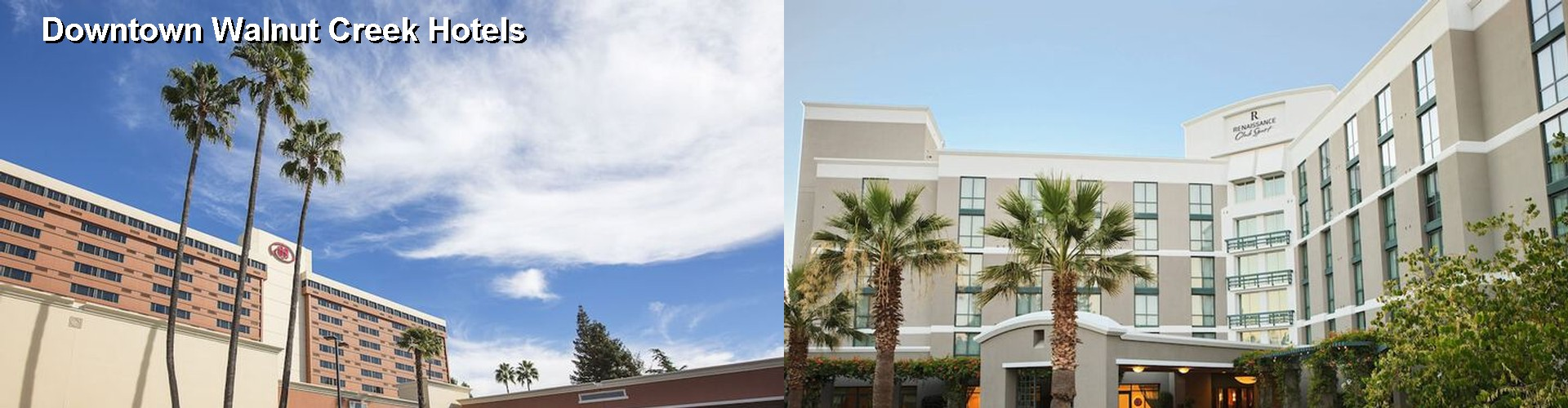 5 Best Hotels near Downtown Walnut Creek