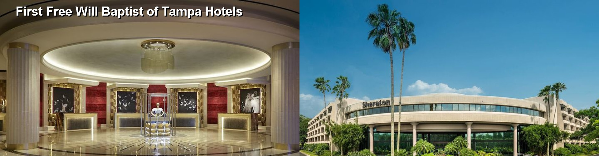 5 Best Hotels near First Free Will Baptist of Tampa