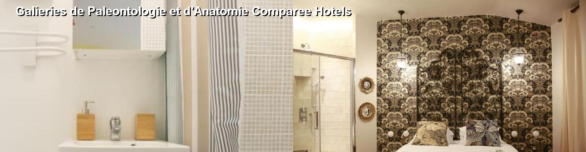 5 Best Hotels near Galieries de Paleontologie et d'Anatomie Comparee