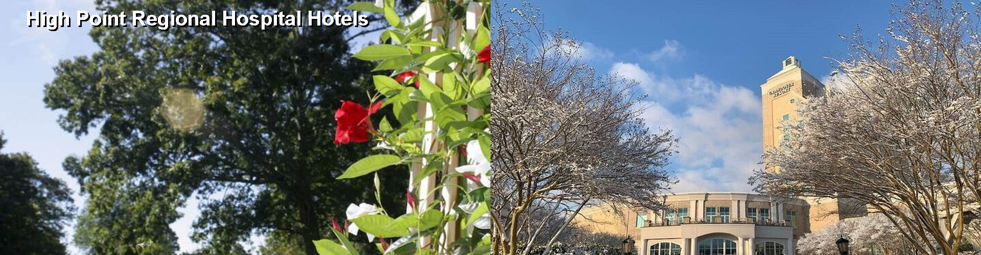 4 Best Hotels near High Point Regional Hospital