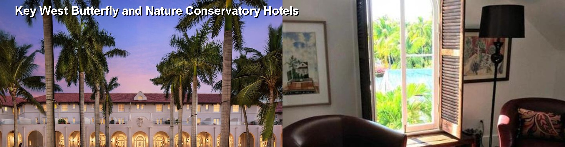 5 Best Hotels near Key West Butterfly and Nature Conservatory